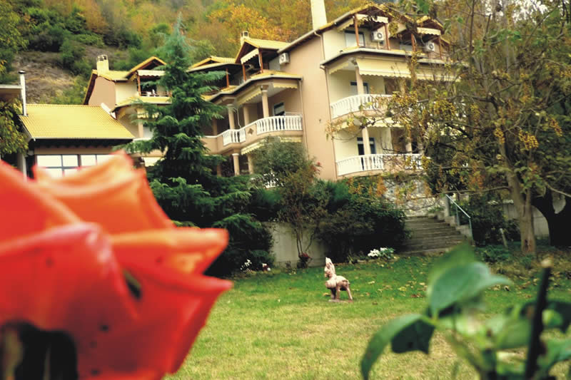 Alkyonis Hotel & Spa Resort